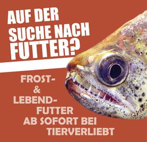 Fischfutter bei tierverliebt