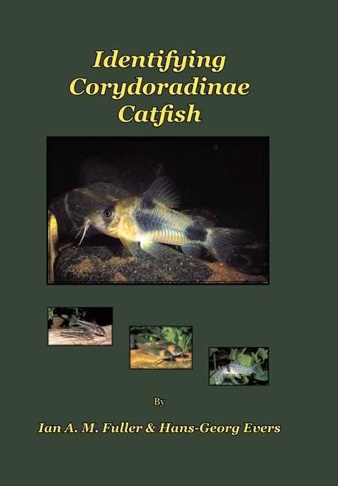 Aqualog Identifying Corydoradinae Catfish