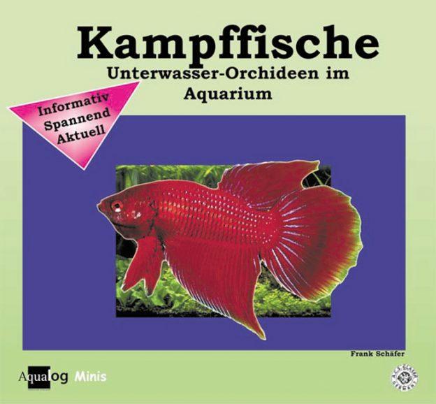 Aqualog Kampffische