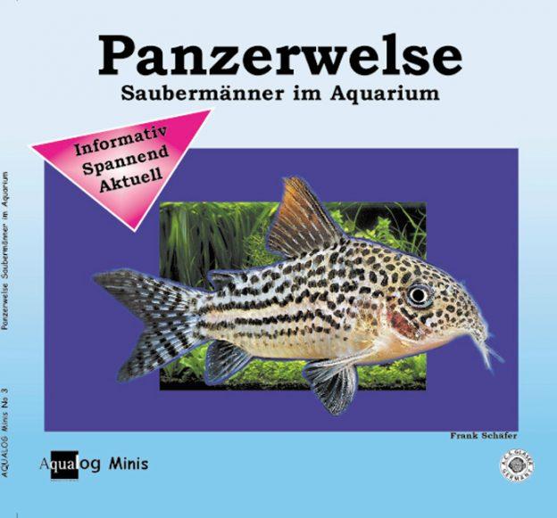 Aqualog Panzerwelse