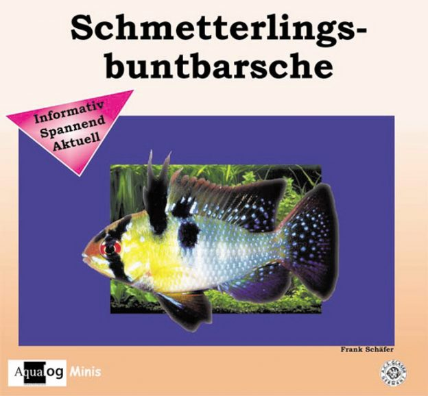 Aqualog Schmetterlingsbuntbarsche