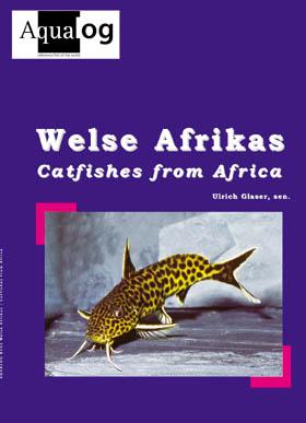 Aqualog Welse Afrikas Catfishes from Africa