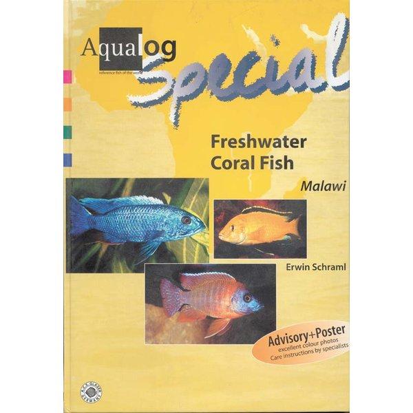 freshwater coral fish malawi_1