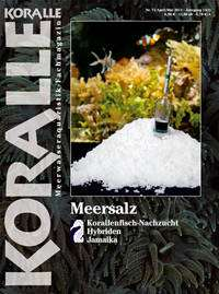 Koralle 74 – Meersalz April/Mai 2012