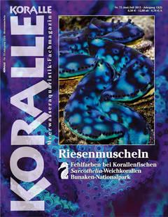 Koralle 75 – Riesenmuscheln Juni/Juli 2012