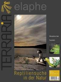 Terraria 35 – Reptiliensuche in der Natur Mai/Juni 2012