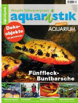 Aquaristik/Aquarium live 4/2012