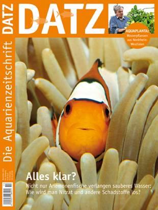 DATZ 11 November 2012