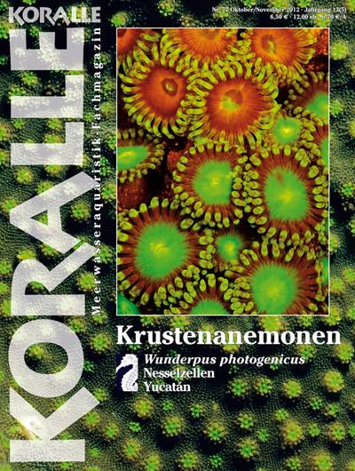 Koralle 77 – Krustenanemonen Okt/Nov 2012