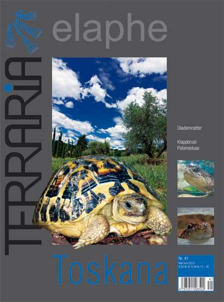 Terraria 41 – Toskana Mai/Juni 2013