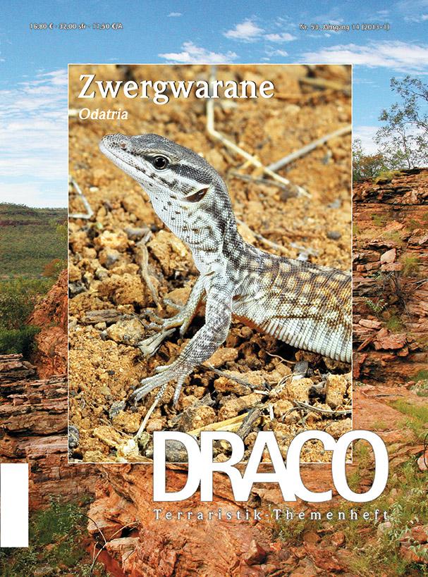 DRACO 53 – Zwergwarane