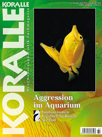 Koralle 81 – Aggression im Aquarium Juni/Juli 2013