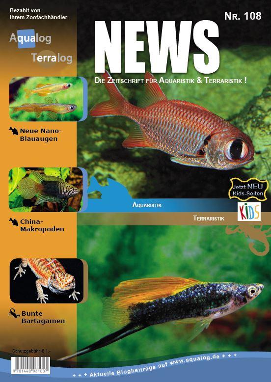 News 108