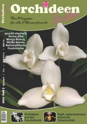 Orchideen Zauber 6 Nov/Dez 2013
