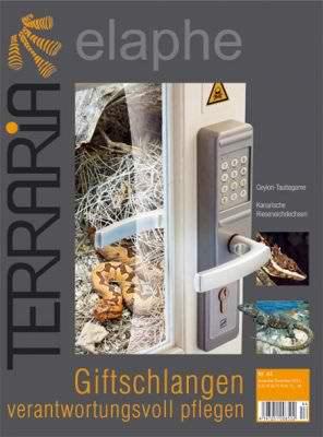 Terraria 44 – Giftschlangen verantwortungsvoll pflegen