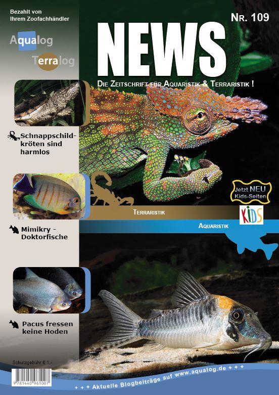 News 109