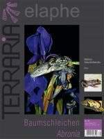 Terraria 45 – Baumschleichen Abronia