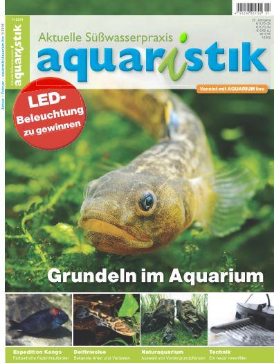 Aquaristik/Aquarium live 1/2014
