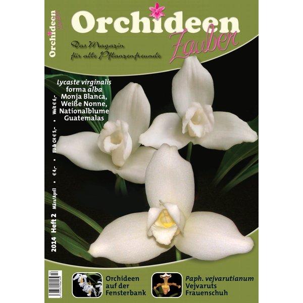 orchideen zauber 2 maerz apr 2014