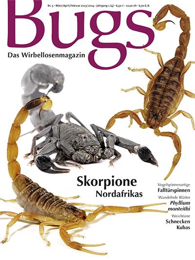 Bugs 5