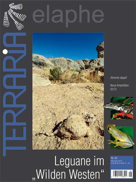 "Terraria 46 – Leguane im ""Wilden Westen"""