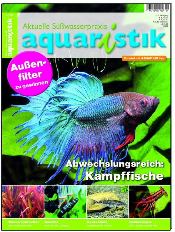 Aquaristik/Aquarium live 4/2014