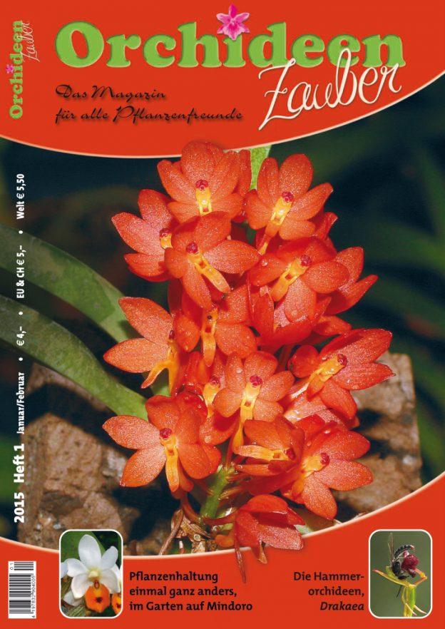 Orchideen Zauber 1 Januar/Februar 2015