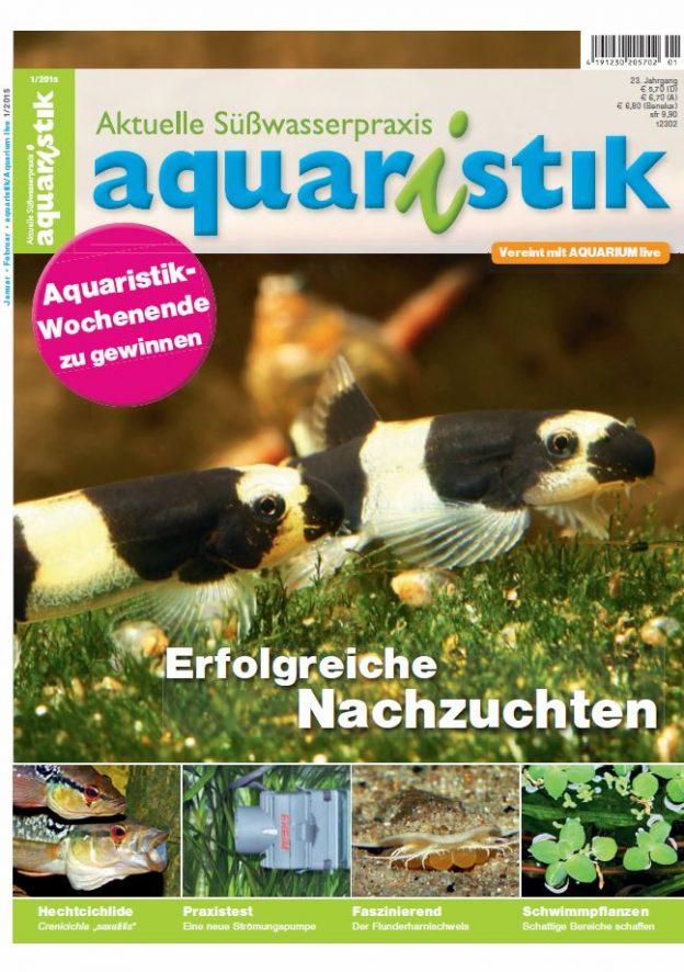 Aquaristik/Aquarium live 1/2015