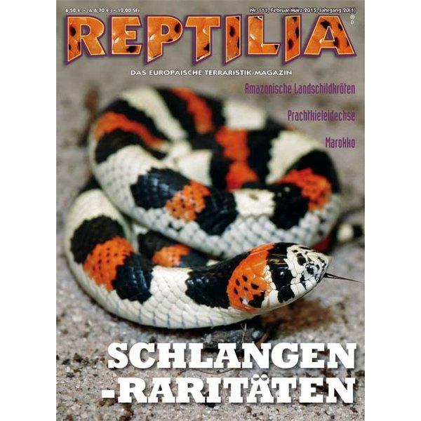 reptilia 111 schlangen raritaeten februar maerz 2015