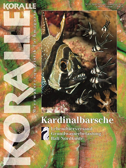 Koralle 92 – Kardinalbarsche (April/Mai 2015)