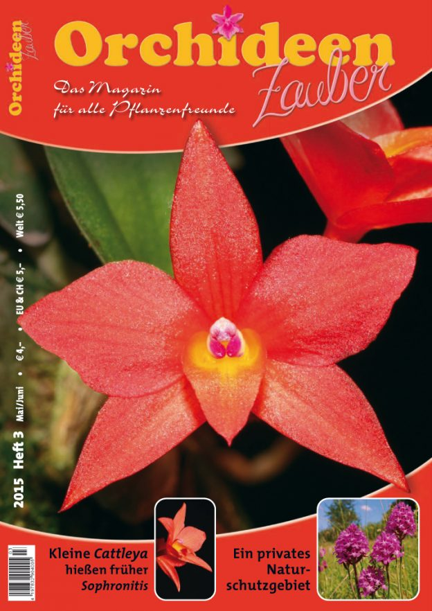 Orchideen Zauber 3 Mai/Juni 2015