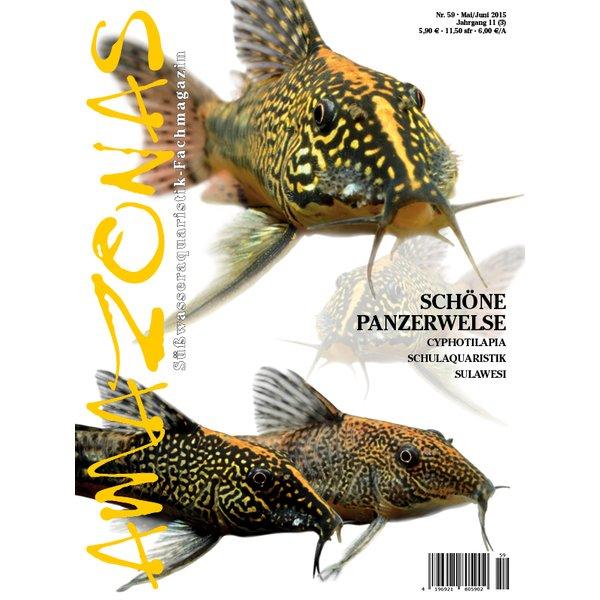 amazonas 59 schoene panzerwelse
