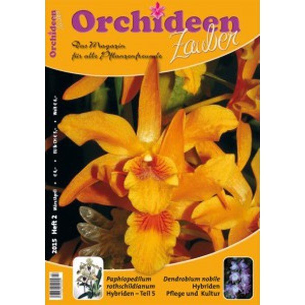orchideen zauber 2 maerz april 2015