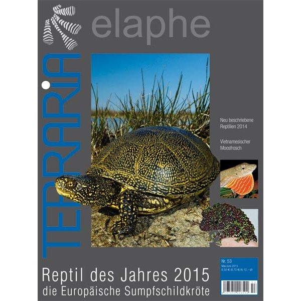 terraria 53 reptil des jahres 2015 die europaeische sumpfschildkroete