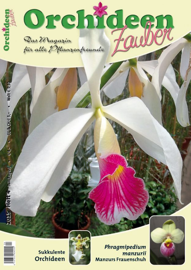 Orchideen Zauber 4 Juli/August 2015
