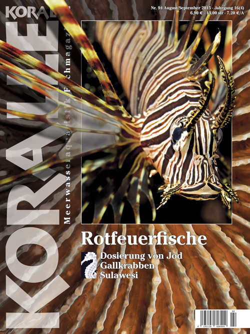 Koralle 94 – Rotfeuerfische August/September 2015