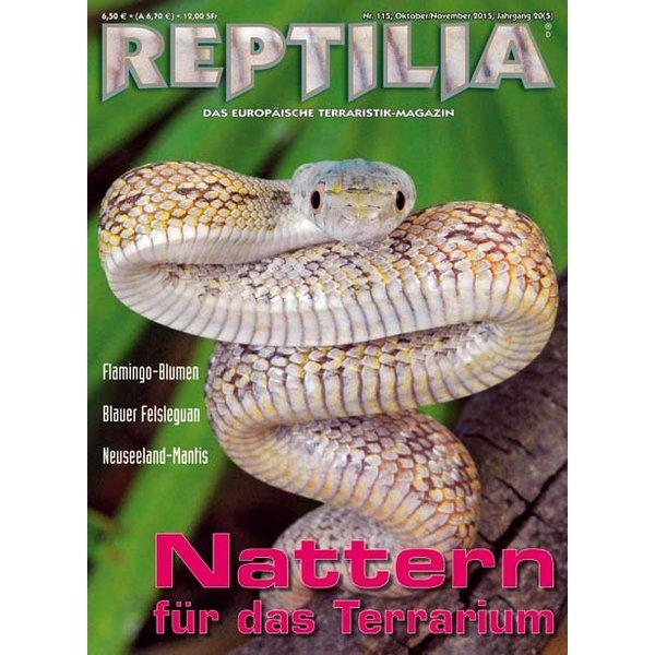 reptilia 115 nattern fuer das terrarium oktober november 2015