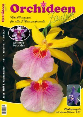 Orchideen Zauber 6 (November/Dezember 2015)