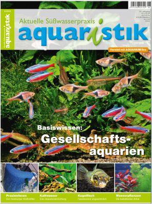 Aquaristik/Aquarium live 6/2015