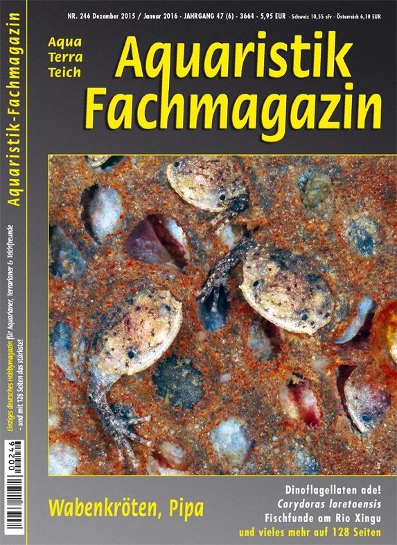 Aquaristik Fachmagazin 246 (Dezember 2015/Januar 2016)