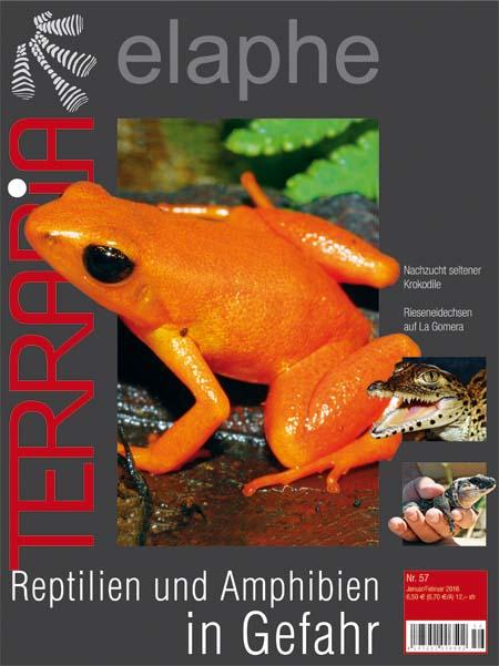 Terraria 57 – Reptilien und Amphibien in Gefahr