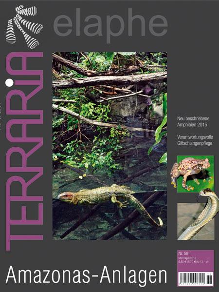 Terraria 58 – Amazonas-Anlagen