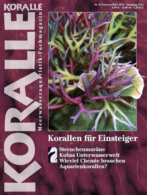 KORALLE 97 - Korallen für Einsteiger Februar/März 2016