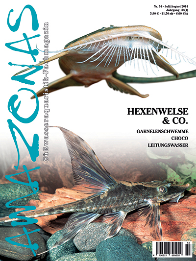 Amazonas 54 - Hexenwelse und Co. ( Juli/August 2014)