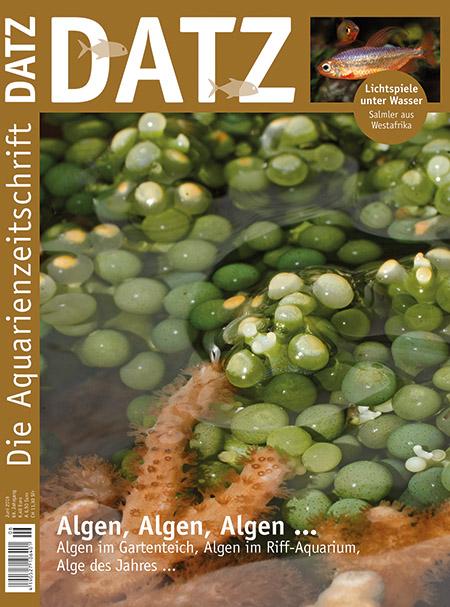 DATZ 2016 - 06 (Juni)