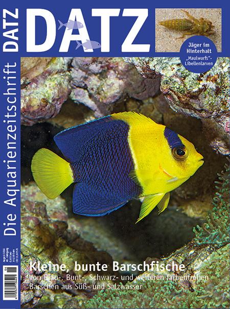 DATZ 2016 - 08 (August)