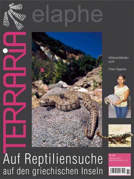 Terraria 60 - Auf Reptiliensuche auf den griechischen Inseln