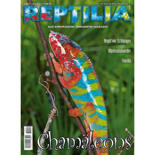 reptilia 119 chamaeleons juni juli 2016