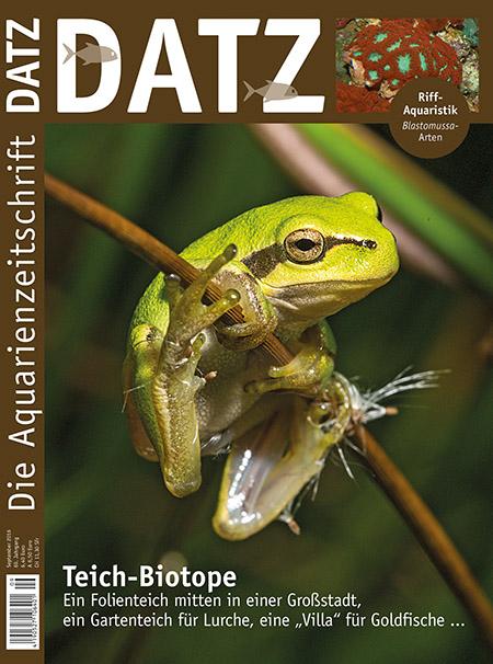 Datz 09 2016