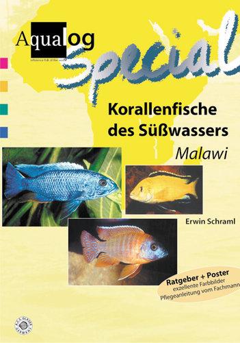 """Korallenfische des Süßwassers """"Malawi"""""""
